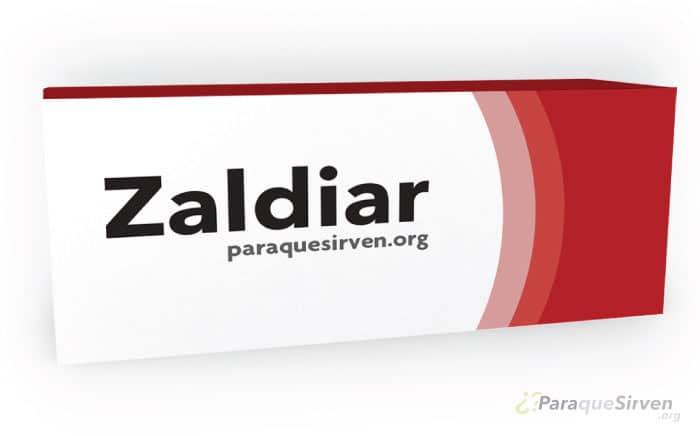 Presentación de Zaldiar